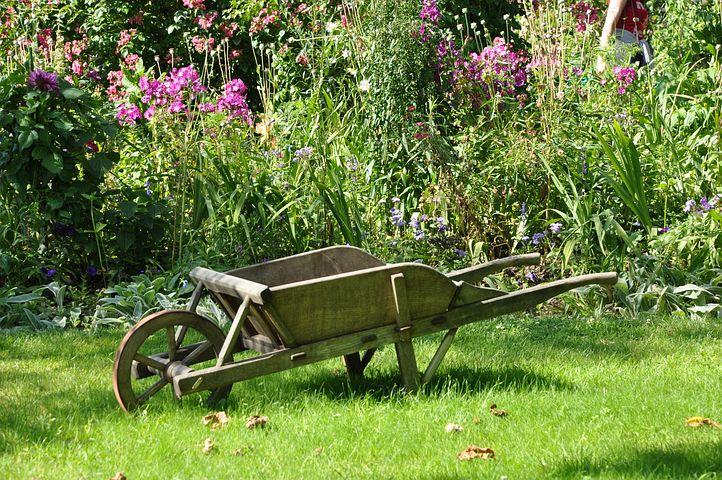 Achetez quelques outils indispensables pour l'entretien d'un jardin
